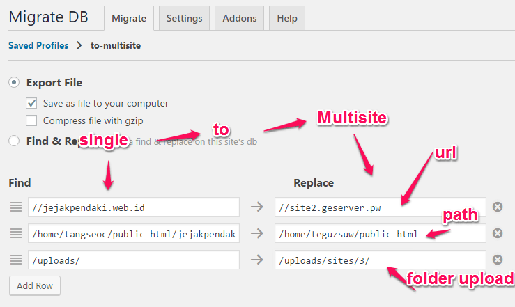 settingan-wp-migrate-db-profile-singlesite-to-multisite